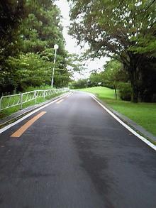 Tsumagoi13
