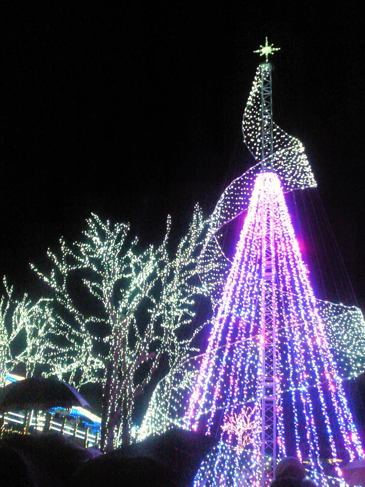 クリスマス彩る(その2)