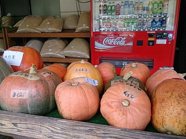 かぼちゃコンテスト