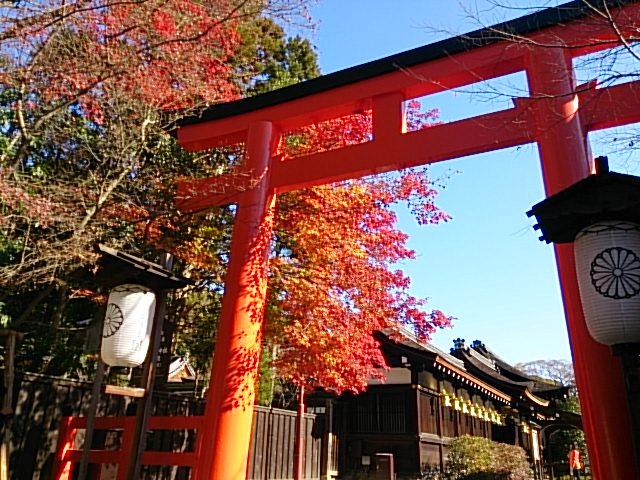 本日の下鴨神社